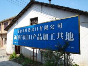 祁門紅茶場