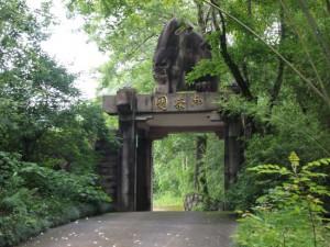 武夷山 御茶園